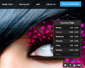 beauty site design in hyderabad, fassion website design in hyderabad, spa website design in hyderabad